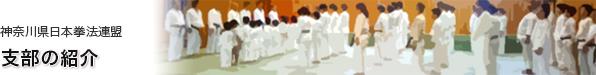 神奈川県日本拳法連盟 支部の紹介