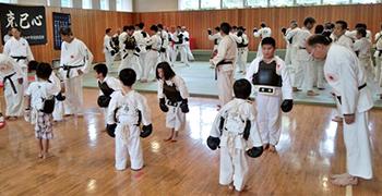日本拳法簡説